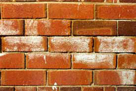 salts-buildup-through-bricks